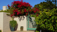 Entrance of expensive home in Santa Barbara California  with gate and flowers Stock Footage