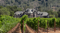 California Napa Valley Sonoma Valley Ledson Vineyards & Winery chateau in wine Stock Footage