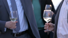 Business men drinking wine and networking Stock Footage
