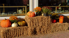Halloween pumpkins in Stowe Vermont in New England with hay for holiday in Stock Footage