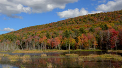 Jericho Burlington Vermont Fall Foliage colors on lake in Northern New England Stock Footage