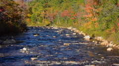 Kancamagus Highway New Hampshire near Conway Swift River with rocks and fall Stock Footage