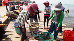 Selling crabs - stock footage