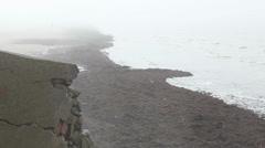 Seaweed covered sand beach Stock Footage