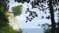 Stock Video Footage of White Cliff At Coast Of Rügen Island Through Branches Of A Tree