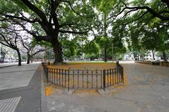 Stock Photo of park in buenos aires