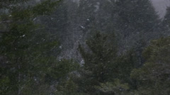 Flurries in the air Stock Footage