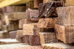 Wood texture (para rubber tree) Kuvituskuvat