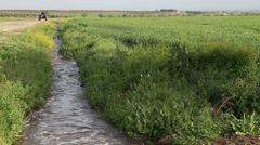 water flowing in an irrigation canal 3 - stock footage