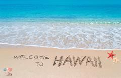 Stock Illustration of welcome to hawaii