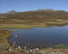 RONDANE NORWAY: Lichen covered arctic landscape + pan small lake or kettle hole, Stock Footage