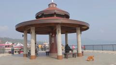 people and dog at sun moon lake pagoda  ita thao pier - stock footage