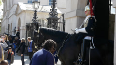 Royal Guard on Horse in Central London Stock Footage