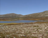 Stock Video Footage of RONDANE, NORWAY vehicle shot lichen and heather covered tundra landscape