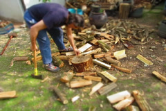 woodcutter timelapse tilt shift effect - stock footage