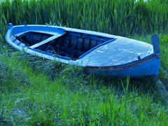 Blue boat in the grass Stock Photos
