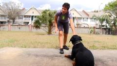 Rottweiler dog learning to lay down Stock Footage