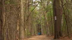 Hiking Trail Timelapse Stock Footage