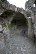 St. John the Baptist hospice Trim, Ireland - stock photo