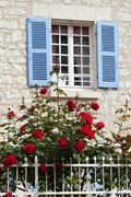 The romantic window with red roses Stock Photos