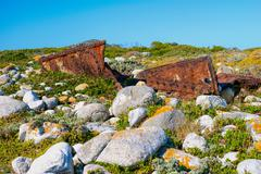 Rusted shipwreck between indigenous flora and grey boulders Stock Photos