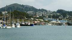 4K Boats in Morrow Bay Harbor Stock Footage