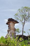 Stock Photo of mushroom stone and blue sky,the natural stone as mushrooms in pha taem nation