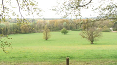 Berkshire countryside Stock Footage