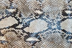Stock Photo of snake skin pattern texture background