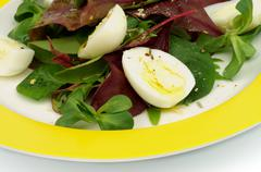 Greens Salad Stock Photos