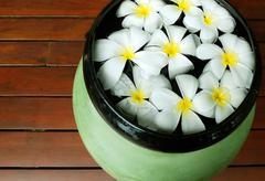 Frangipani flowers floating in the ancient bowl Stock Photos
