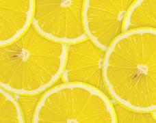 Tiivistelmä tausta sitrushedelmien sitruunan viipaleet. Lähikuva. Piirros