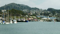 Boats in Morrow Bay Harbor Stock Footage