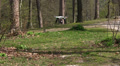 Copter\drone  slow  fly in  spring wood Footage