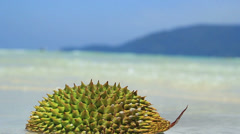 Durian fruit on a beach (Malaysia) Stock Footage