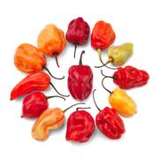 Stock Photo of Scotch pepper group against white background