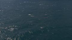 Blue ocean shore Stock Footage