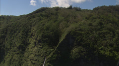 Green forrest blue sky Stock Footage