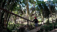 Lady crosses bamboo bridge over mountain river Stock Footage