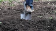 Stock Video Footage of soil with foot