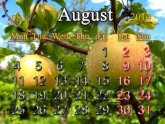 Stock Illustration of calendar for the august of 2014 year with apples