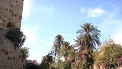 Palm trees at the walls of the Grand Masters Palace in Rhodes, Greece. Stock Footage
