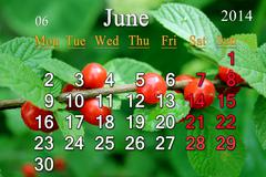 Calendar for the june of 2014 with red cherry Stock Illustration