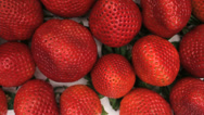 Stock Video Footage of Strawberry Fruit Top View Slider Close Up