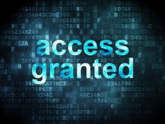 Information concept: access granted on digital background Stock Illustration