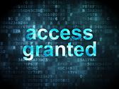 Stock Illustration of Information concept: access granted on digital background