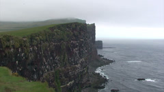 Puffin sanctuary cliffs of Latrabjarg in Iceland Stock Footage
