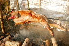 Lamb on the spit over open fire Stock Photos