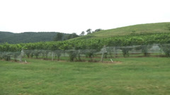 Car dolly stabilizer of vineyard 01 Stock Footage