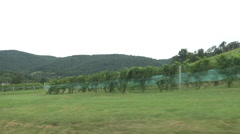 Car dolly stabilizer of vineyard 02 Stock Footage